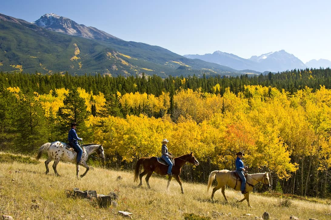 Horse Riding through the Canadian Rockies