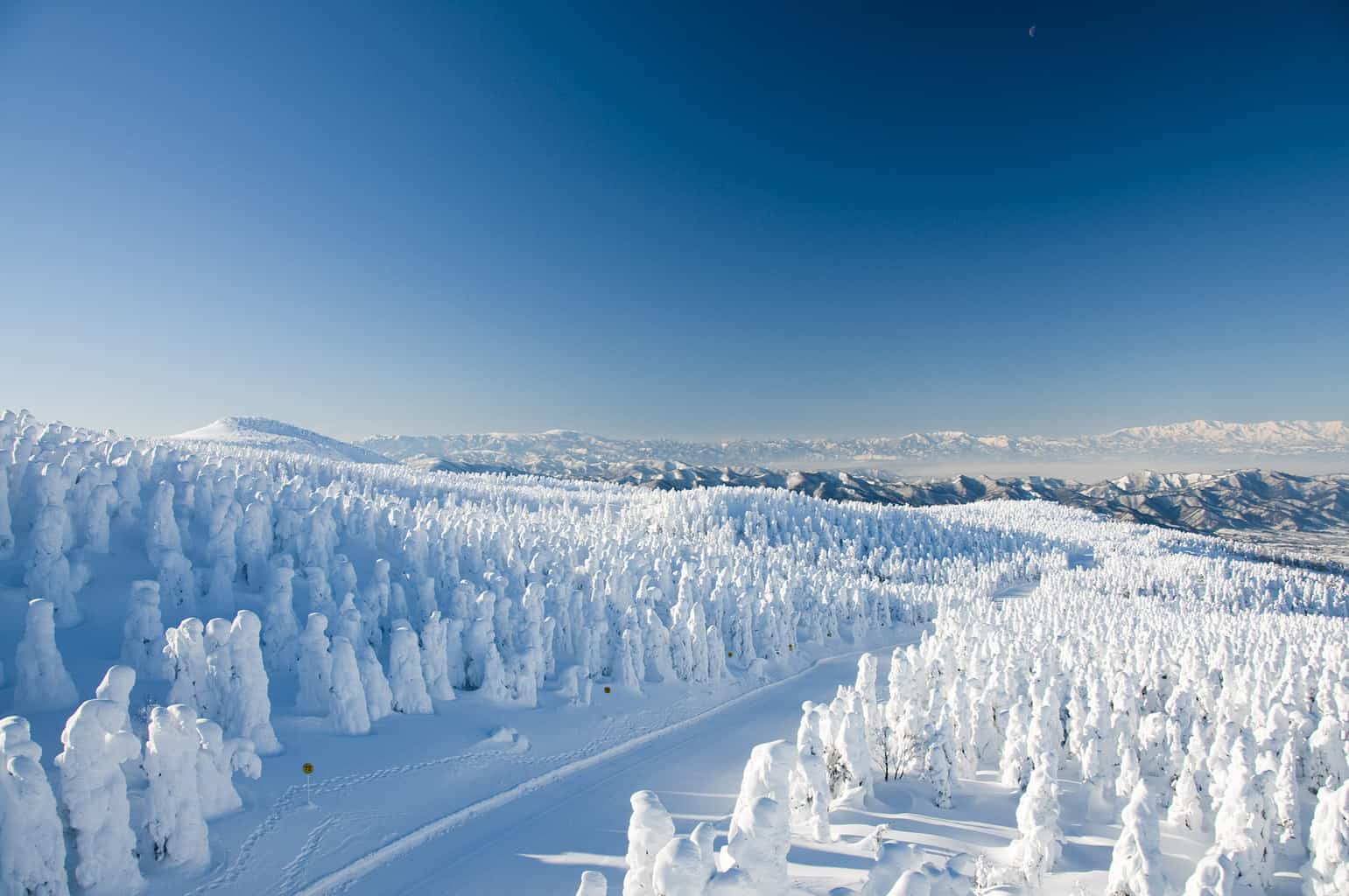 Japan-Niseko-Snowy-Trees-Mountains